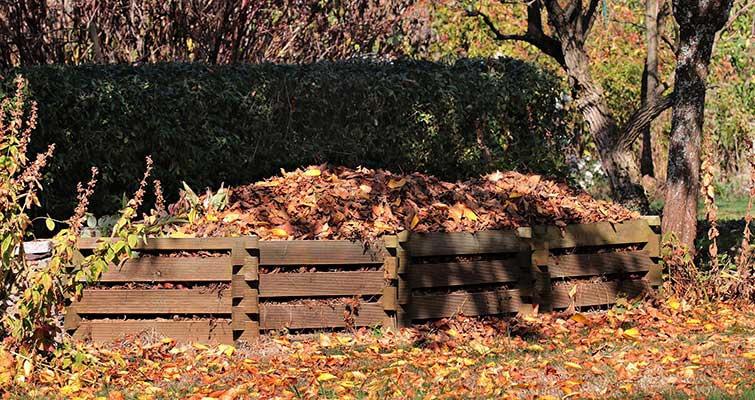 Compost en automne - Copyright - pixel2013